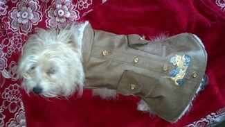 Embroidered Jackets Medford OR